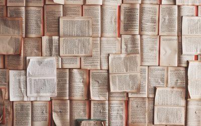 L'histoire de la commune, les monographies